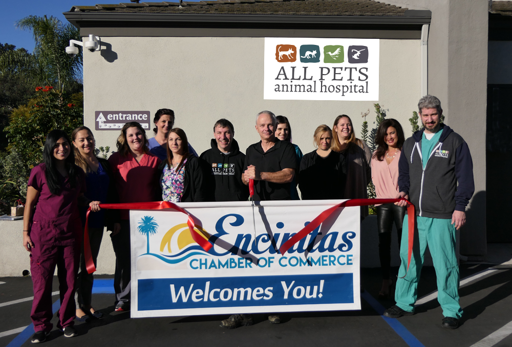 Ribbon Cutting Event All Pets Animal Hospital Encinitas Chamber